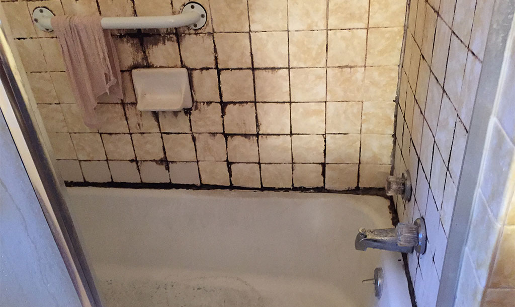 How do I Clean Black Mold in Shower Silicone