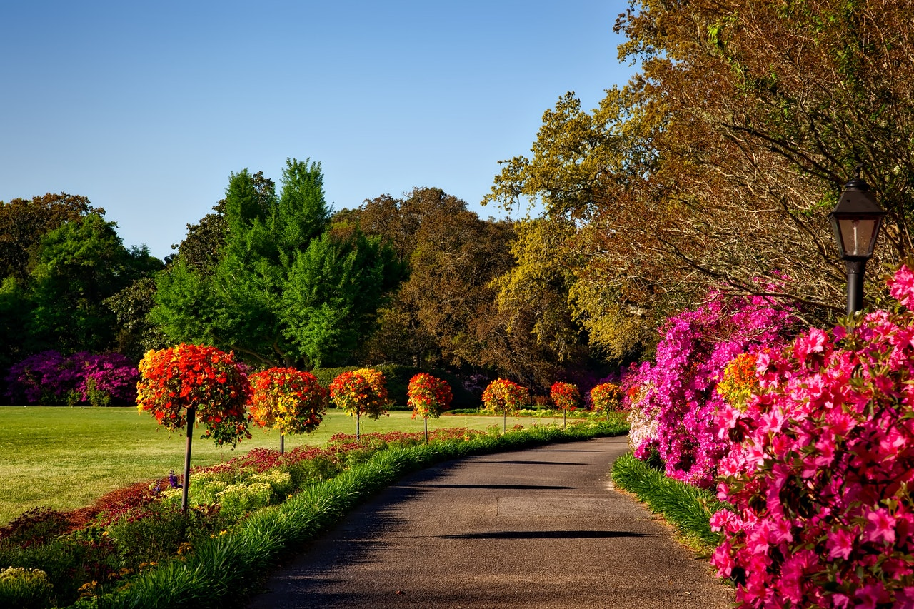 Benefits of Landscaping and Companies in Lansing MI